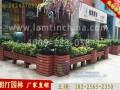 安徽朗汀园林市政绿化花箱