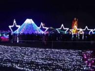梦幻灯光展必备灯光节场地亮化造型厂家