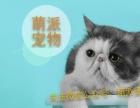 萌派宠物,可信赖的宠物平台 专业 上门取猫