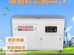 大功率40千瓦汽油发电机报价