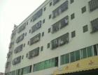 高新区 3到6楼 写字楼 1920平米
