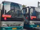 重庆涪陵国企5-60座旅游大巴车包车租车商务旅游公务车