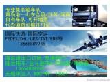 青岛港专业办理无船承运人资质 优势货代 进出口海运订舱