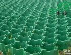 广州绿色梅花植草格,广州植草格价格,杰袖植草格厂家供应