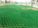 安徽7公分植草格 7公分塑料植草格 抗老化植草格