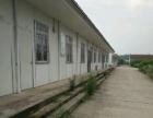 机场 厂房,仓库 1000平米