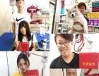 淄博宠物美容培训学院开始招生