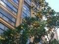 东方龙城+合租房+价格合理+出行方便+适合学生党。