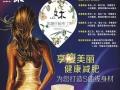又木-红枣姜茶加盟 油漆涂料 投资金额 1-5万元