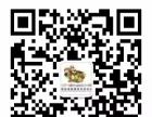 蘑菇松鼠国际早教番禺中心1周年庆典——蘑菇松鼠 感恩有你