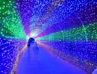 国际灯光艺术节nice的策划展览租赁