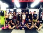 北京回龙观上地西二旗天龙少儿跆拳道搏击格斗培训班招生