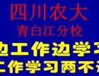 2018秋农大学历历正在报名中