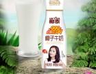 厂家直销椰泰椰子牛奶现正在面向全国火爆免费加盟中