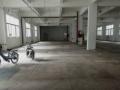 后海白石洲新出一楼标准厂房1000平急租带水电
