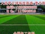 台江人造草足球场施工-人造草皮价格