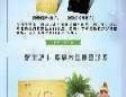 广东宝旅旅游集团有限公司加盟 旅游/票务