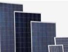 宁夏原生多晶回收 电池片回收 组件回收 硅片回收