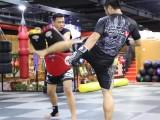 北京哪里學綜合格斗好-北京綜合格斗培訓班-北京綜合格斗俱樂部