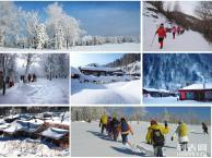 每天深圳出发哈尔滨穿越雪乡长白山景区境泊湖吉林雾凇岛7日游