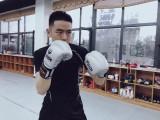 拳击 散打 搏击武术班长期招生