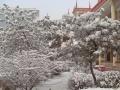 山西省太原市杏花岭区望景老年度假村