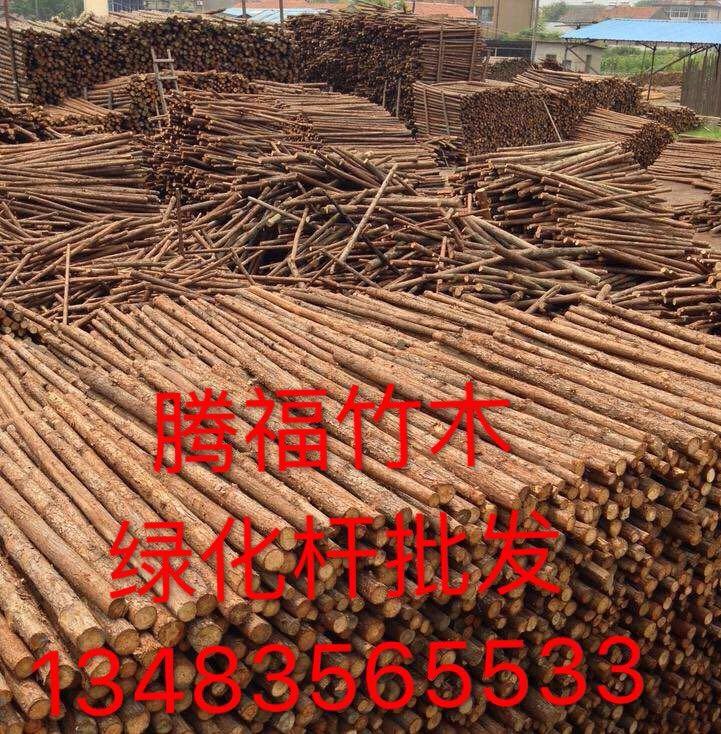 河北唐山腾福竹木常年供应竹竿,竹片,竹跳板,园林绿化支撑杆等
