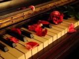 在职专业钢琴老师有耐心重视奏讲方法包考级可英皇辅导和声乐伴奏