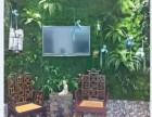 专业植物墙配材批发,草坪,仿真花,仿真藤条,仿真草