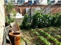 东光道口,春光小学东面 200平米,可出售可出租。