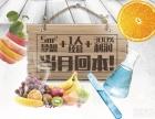 南阳冷饮冰淇淋加盟 诺恋烤冰淇淋加盟店