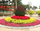 防腐木栅栏围栏绿植花卉装饰别墅小区花园阳台户外花架设计施工