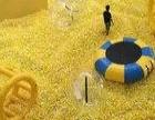 百万海洋球出租 租凭 百万海洋球展览 儿童的乐园