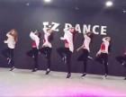 TZ国际舞蹈培训机构