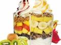 爱咪欧冻酸奶加盟条件