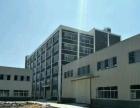 龙州工业园 仓库出租 7000平米