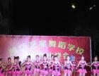 潍坊艺星专业 (拉丁舞、民族舞、街舞、美术、古筝) 培训