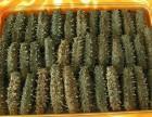 长期大量回收海参鱼肚燕窝鱼翅瑶柱鹿茸海马冬虫夏草