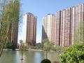 兰亭御湖城 免税房 精装两居 空家出售 大红本满二 即买即住