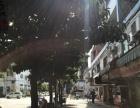 急转2光明新区长圳路商业街卖场 餐馆餐饮店门面转让