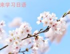 上海日语零基础,日语口语培训,随到随学一对一培训