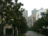 亳州-房产4室2厅-170万元