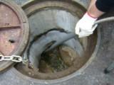 临海快速上门疏通下水道 马桶 阴沟 化粪池清理 抽粪