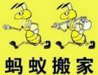 青岛蚂蚁搬家公司