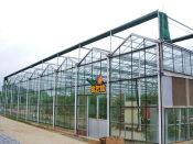 山东结实耐用的智能温室-天津智能温室