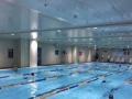 皇室堡健身游泳三年卡(通用)转让