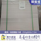 大量供应铜版卡纸 {荐}博大纸业优惠的250克铜版卡纸供应