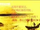 李泰山沙画(深圳总部)培训学校第15期1月20日盛大开课!