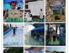 厂家租赁出租互动投影装置 AR鱼游互动沙滩互动砸球