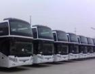 大巴车队整 汽车租赁/买卖 投资金额 50万元以上